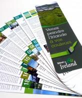 Workshop en Irlande / Meet in Ireland